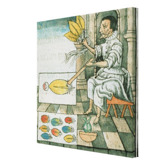 An Aztec feather artisan Canvas Print