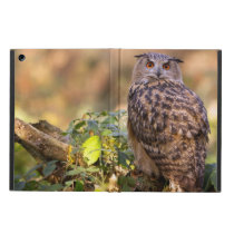 An Eagle Owl Cover For iPad Air