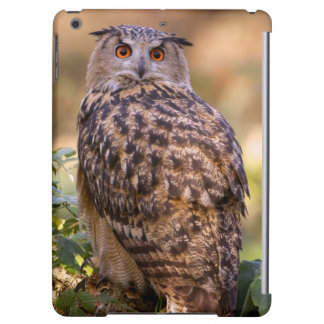 An Eagle Owl iPad Air Covers