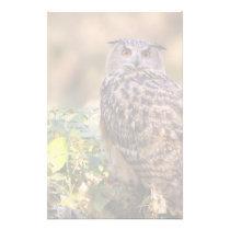 An Eagle Owl Stationery
