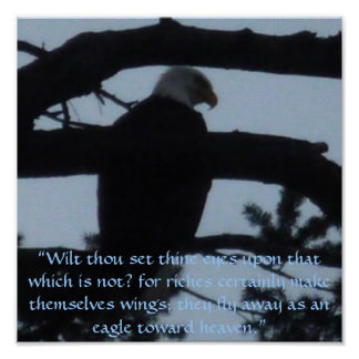 An Eagle Point of View Poster