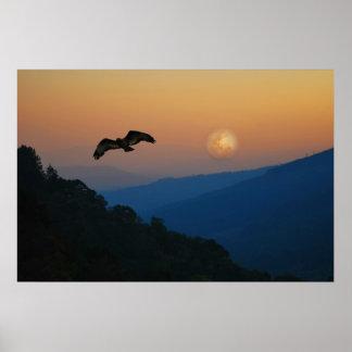 An eagles ascent print