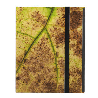 An Earthy Yellow and Brown Leaf Macro Image iPad Cover