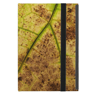 An Earthy Yellow and Brown Leaf Macro Image iPad Mini Case
