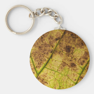 An Earthy Yellow and Brown Leaf Macro Image Keychain