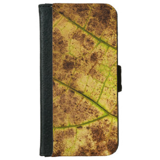 An Earthy Yellow and Brown Leaf Macro Image iPhone 6 Wallet Case
