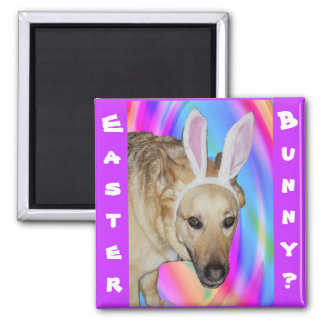 An Easter Bunny? Magnet