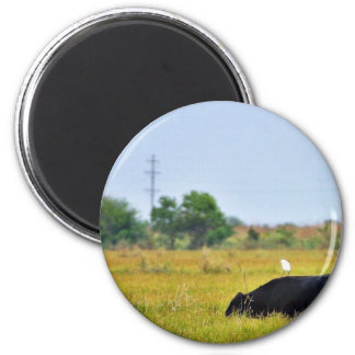 An Egret Riding A Cow Fridge Magnets