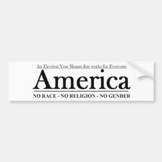 An Election Year Slogan that works for Everyone Bumper Sticker