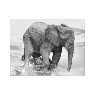 An Elephant at water Stretched Canvas Prints
