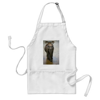 An elephant in the north Thailand Aprons