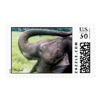 AN ELEPHANT NAMED 'MADUKALE' IN NEPAL JUNGLE POSTAGE