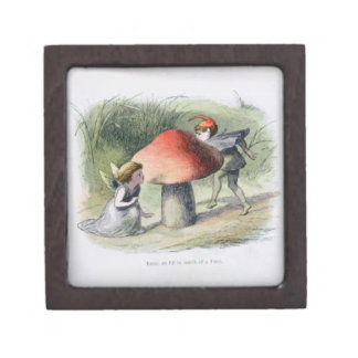 An Elf in Search of a Fairy, illustration from 'In Premium Jewelry Box