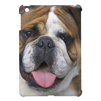 An english bulldog in Belgium. Cover For The iPad Mini
