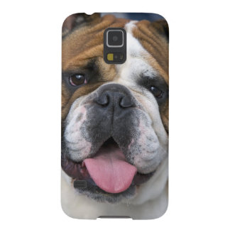 An english bulldog in Belgium. Galaxy S5 Case