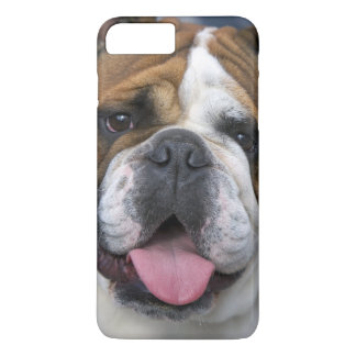 An english bulldog in Belgium. iPhone 8 Plus/7 Plus Case