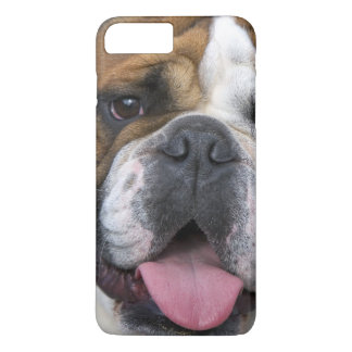 An english bulldog in Belgium iPhone 8 Plus/7 Plus Case
