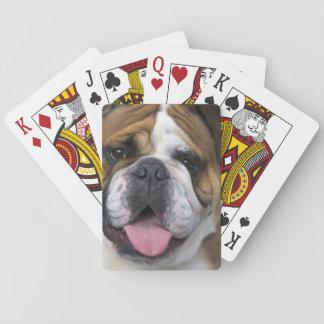 An english bulldog in Belgium. Playing Cards