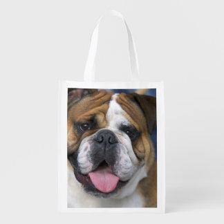 An english bulldog in Belgium. Grocery Bags