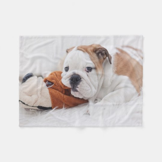 english bulldog blanket an english bulldog puppy playing with a bulldog fleece 229