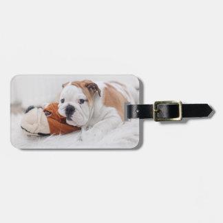 An English Bulldog Puppy Playing With A Bulldog Luggage Tag