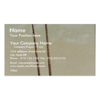 """An """"Estufa"""", Pueblo of Taos, N.M. classic Photochr Double-Sided Standard Business Cards (Pack Of 100)"""