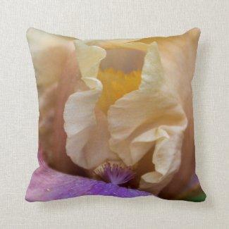 An exquisite pillow of Iris close up
