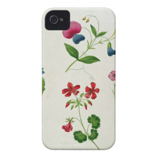 An illustration from 'A New Treatise on Flower Pai iPhone 4 Covers