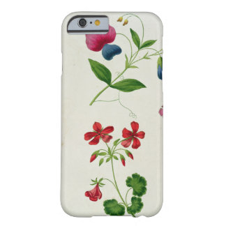 An illustration from 'A New Treatise on Flower Pai Barely There iPhone 6 Case