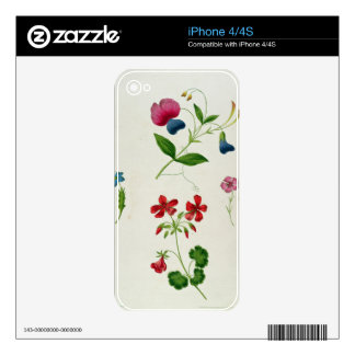 An illustration from 'A New Treatise on Flower Pai Decal For iPhone 4