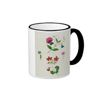 An illustration from 'A New Treatise on Flower Pai Ringer Coffee Mug