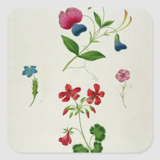 An illustration from 'A New Treatise on Flower Pai Square Sticker