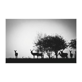 An image of some deer in the morning mist canvas print