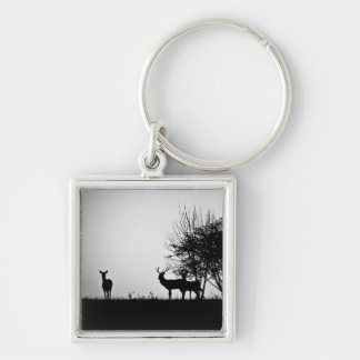 An image of some deer in the morning mist keychain