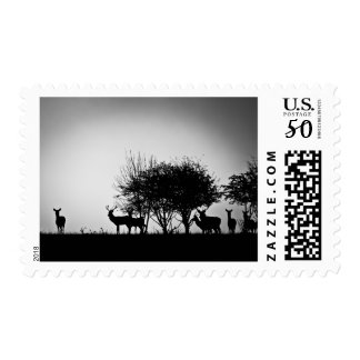 An image of some deer in the morning mist postage