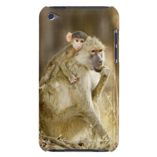 An infant Yellow Baboon(Papio Case-Mate iPod Touch Case