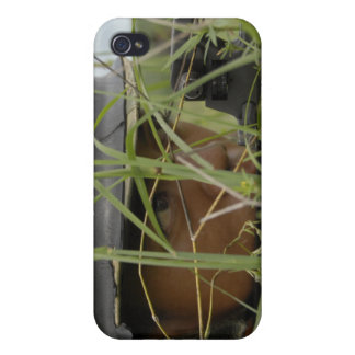 An infantryman with the Royal Thai Marines Cases For iPhone 4