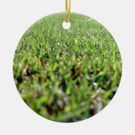 An insect's eye view of lawn christmas tree ornament