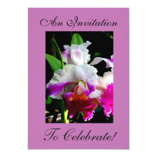 AN INVITATION TO CELEBRATE - LUSCIOUS ORCHID ART