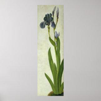 An Iris Poster