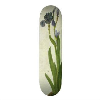 An Iris Skateboard