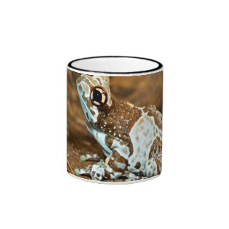 An Isolated Frog In Terrarium Ringer Coffee Mug