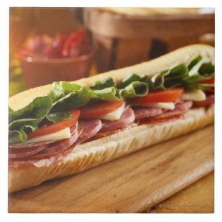 An Italian sub sandwich with 2 Ceramic Tile