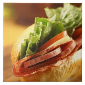 An Italian sub sandwich with Ceramic Tile