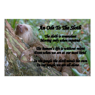 An Ode To The Sloth Poster