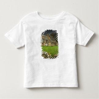An Old Church Under A Dark Sky Toddler T-shirt