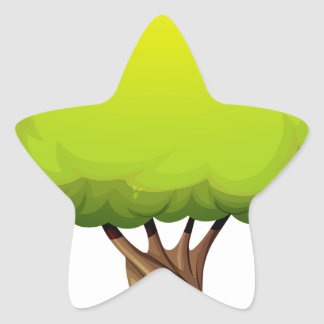 An old giant tree star sticker