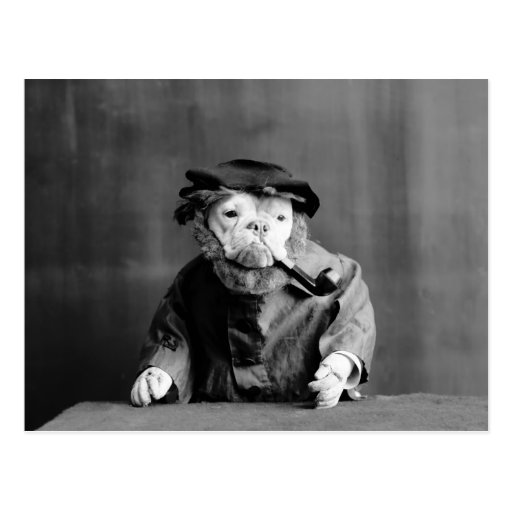 An Old Sea Dog: 1905 Postcard