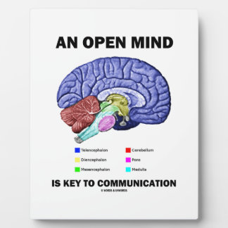 An Open Mind Is Key To Communication (Brain) Plaque
