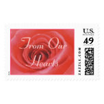 An Open Rose (1), From Our Hearts Stamps